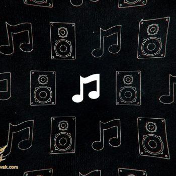 تاریخ پیدایش موسیقی
