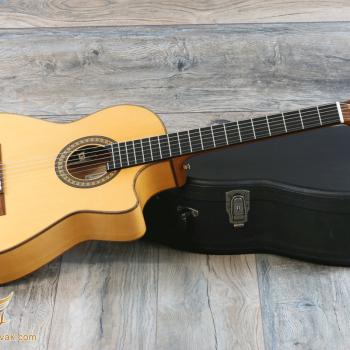 آموزش گیتار فلامنکو در تهرانپارس